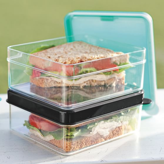 Keep Cool Sandwich Container, Black/Clear