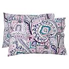 Vintage Paisley Extra Pillowcases, Set of 2, Cool