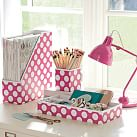 Printed Desk Accessories, Set of 3: Magazine Caddy, Divided Tray and Cup, Pink Dottie